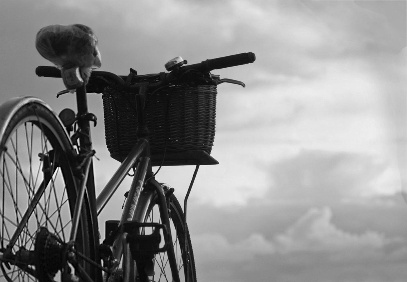 Sky Bike#Dickens Roger