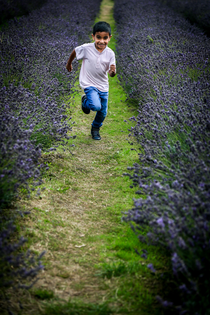 Lavender running boy